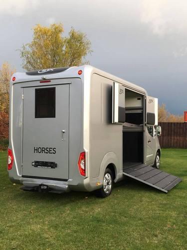 nouvelles stx 2 horses stallion